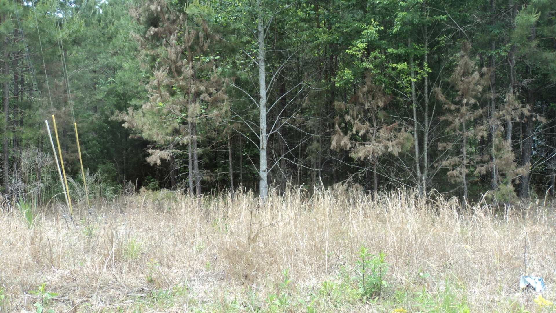 Photo for 416 Knottywood Dr, Lavonia, GA 30553 (MLS # 8584267)