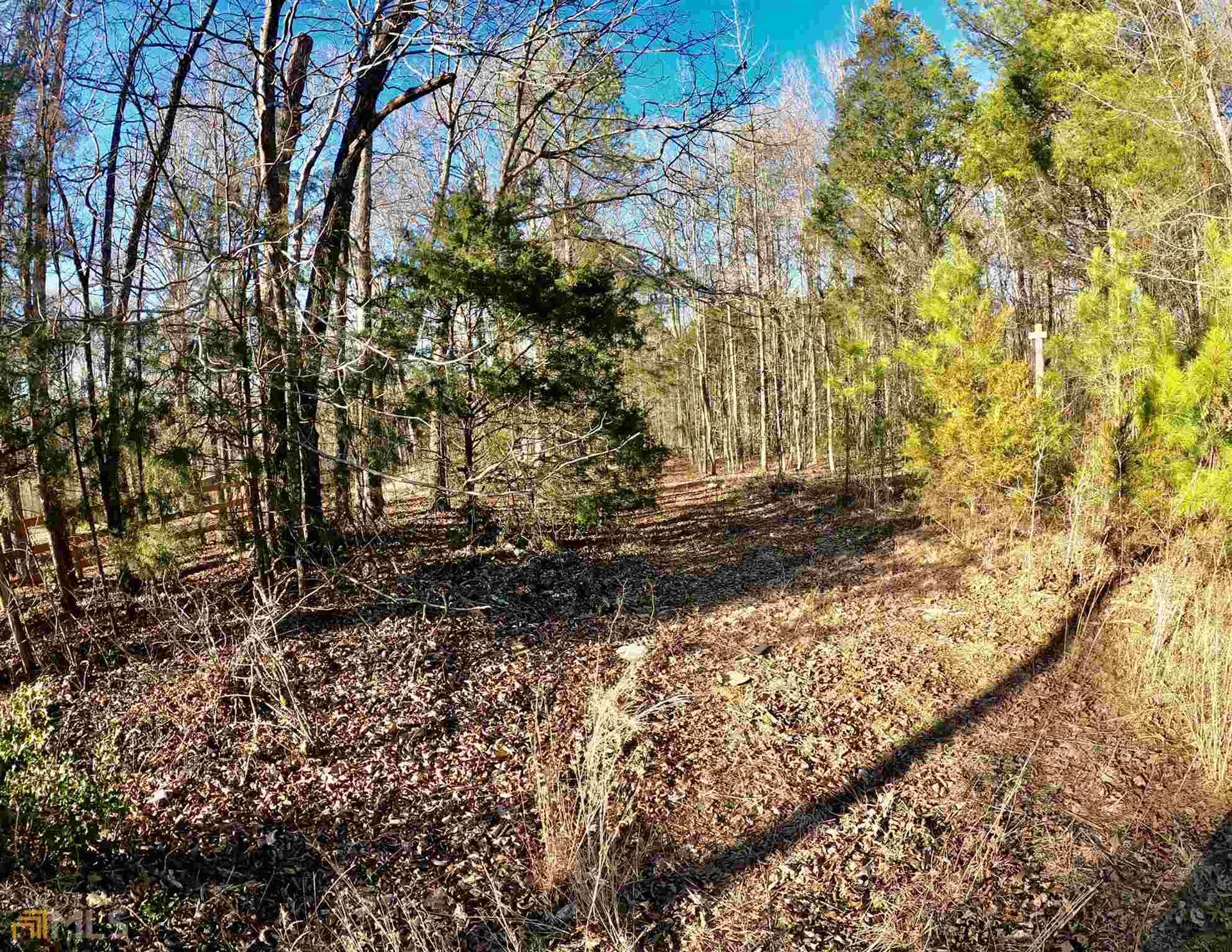 Photo for 0 Chestnut Rd, Covington, GA 30016 (MLS # 8931271)