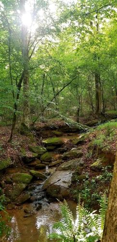 Photo of Monticello, GA 31064 (MLS # 9067353)