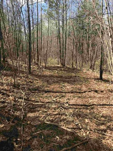 Photo of 0 Dollie Phillips At And Atkinson Br Rd, Carnesville, GA 30521 (MLS # 8802416)