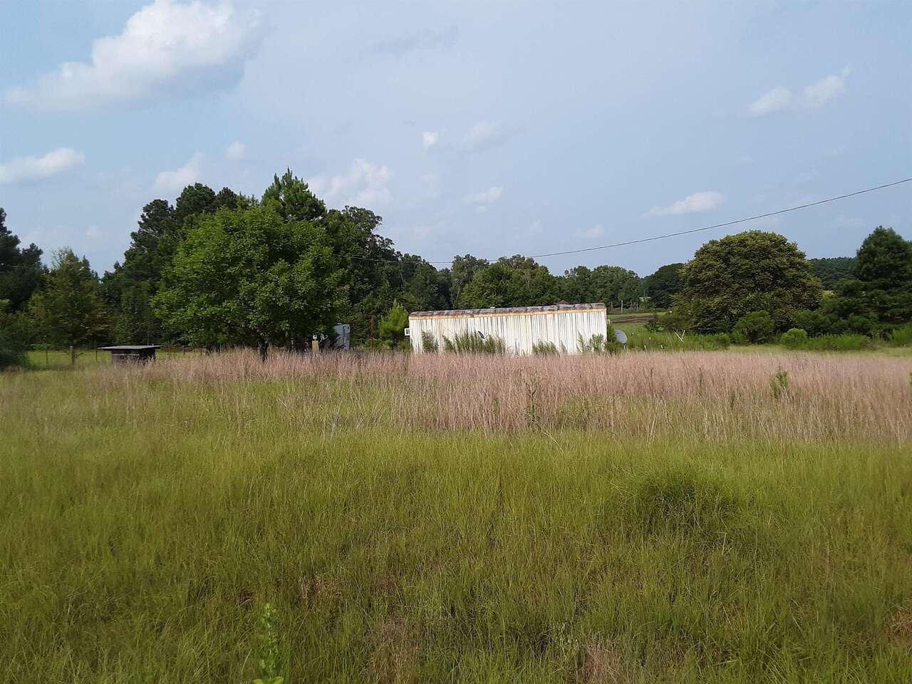 Photo of 0 New Bethel Road #LOT A, Davisboro, GA 31018 (MLS # 9032425)