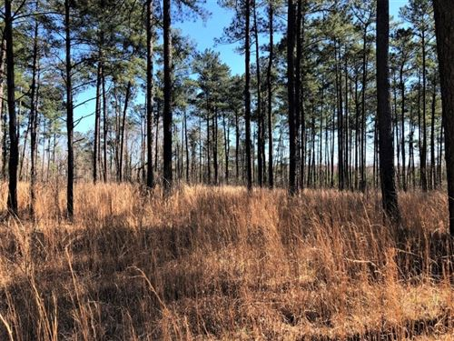 Photo of 0 Five Points Rd, Gray, GA 31032 (MLS # 8941635)