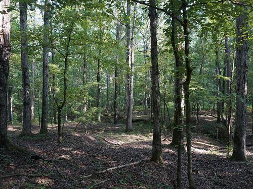 Photo of Hillsboro, GA 31038 (MLS # 9072743)