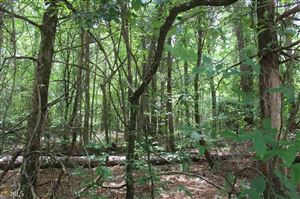 Tiny photo for 0 Buddy Faust Rd, Crawford, GA 30630 (MLS # 8609759)