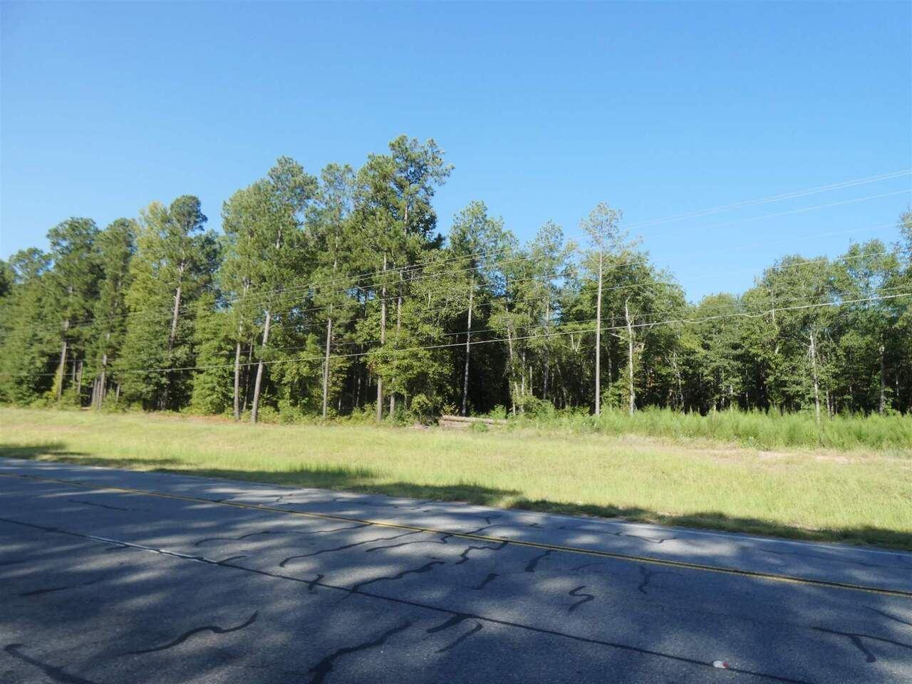 Photo of 0 N Highway 15, Sandersville, GA 31082 (MLS # 8904813)