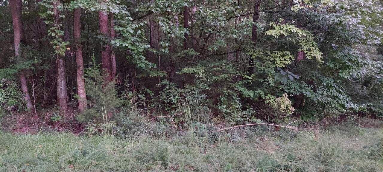 55 Bobwhite Court, Monticello, GA 31064 - MLS#: 9055849