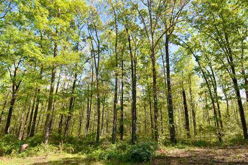 Photo of 1075 Blount RD, Meansville, GA 30256 (MLS # 8959855)