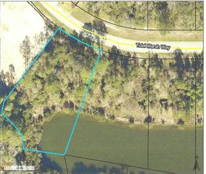 Photo of 0 Tidal Marsh Way, St. Marys, GA 31558 (MLS # 8460863)