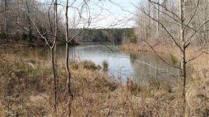 Photo of 0 Beaverdam Dr, Elberton, GA 30635 (MLS # 8558870)