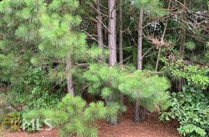 Photo of 0 Will Bailey Rd, Hartwell, GA 30643 (MLS # 8612876)