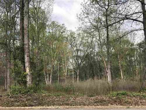 Photo of 0 Scales Creek Rd, Homer, GA 30547 (MLS # 8908989)