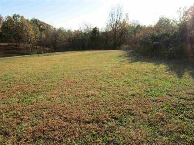 Photo of 3075 Ashes Creek Ln, Bloomfield, KY 40008 (MLS # 1582016)