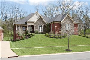 Photo of 17115 Shakes Creek Dr, Fisherville, KY 40023 (MLS # 1529363)