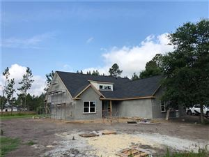 Photo of 111 Silver Bluff Drive, Brunswick, GA 31523 (MLS # 1609970)