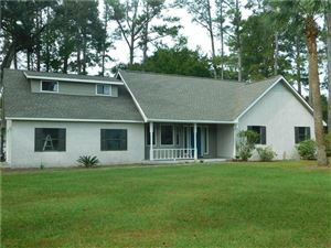 Photo of 101 CLIPPER Lane, Brunswick, GA 31523 (MLS # 1603988)
