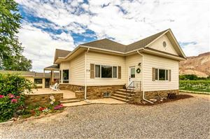 Photo of 719 36 3/10 Road, Palisade, CO 81526 (MLS # 20194030)
