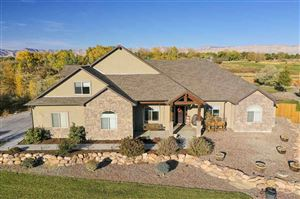 Photo of 788 Foxtail Road, Grand Junction, CO 81505 (MLS # 20196041)