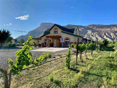 Photo of 3572 G Road, Palisade, CO 81526 (MLS # 20203146)