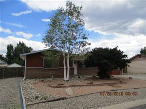 Photo of 3177 William Drive, Grand Junction, CO 81503 (MLS # 20194234)