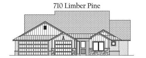 Photo of 710 Limber Pine Street, Fruita, CO 81521 (MLS # 20201463)