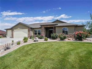 Photo of 2510 Greystone Drive, Grand Junction, CO 81505 (MLS # 20193503)