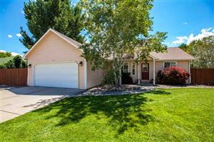 Photo of 3123 Devin Drive, Grand Junction, CO 81504 (MLS # 20194589)