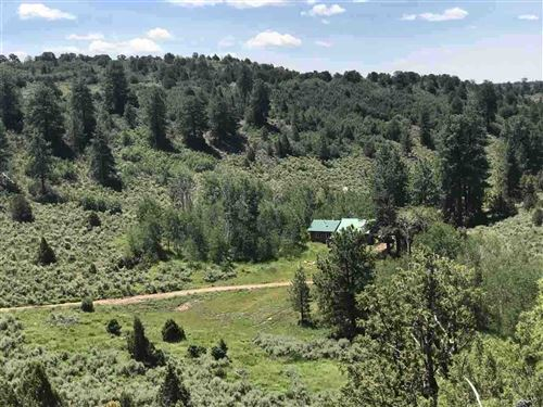 Photo of 6501 Uncompahgre Divide Road, Whitewater, CO 81527 (MLS # 20202597)