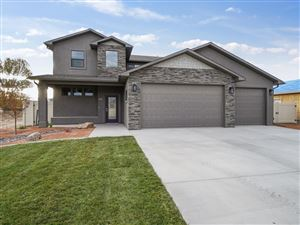 Photo of 1105 Aspen Village Lp, Fruita, CO 81521 (MLS # 20190603)