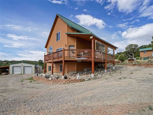 Photo of 1885 Miller Canyon Ranch Road, Glade Park, CO 81523 (MLS # 20202634)