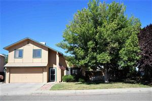 Photo of 453 Morning Dove Drive, Grand Junction, CO 81504 (MLS # 20194636)