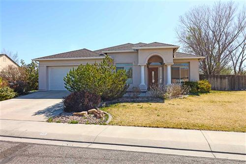 Photo of 609 S Annabelle Court, Fruita, CO 81521 (MLS # 20211652)