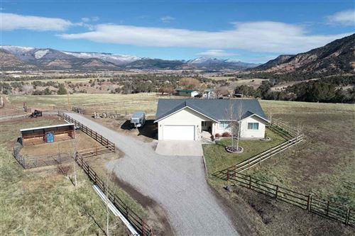 Photo of 15734 Red Mountain Lane, Collbran, CO 81624 (MLS # 20205700)