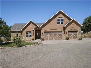 Photo of 2454 Bella Pago Drive, Grand Junction, CO 81507 (MLS # 20194997)