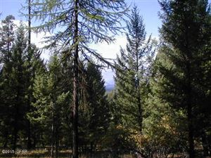 Photo of NHN Grizzly DR, SEELEY LAKE, MT 59868 (MLS # 18-14)