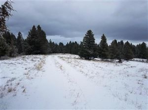 Photo of NHN N Lincoln Gulch RD, LINCOLN, MT 59639 (MLS # 18-41)