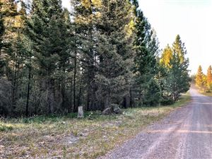 Photo of 3823 Stonewall Creek RD, LINCOLN, MT 59639 (MLS # 18-312)
