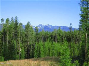 Photo of Lot 4 Stoner Lake RD, CONDON, MT 59826 (MLS # 18-367)