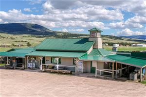Photo of 9393 South Fork RD, SAPPHIRE VILLAGE, MT 59452 (MLS # 18-1388)