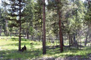 Photo of 170 Leota Peak CT, SEELEY LAKE, MT 59868 (MLS # 16-1501)