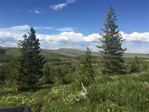 Photo of 1217 US Highway 49 #(165 acres apprx), BABB, MT 59411 (MLS # 18-2546)