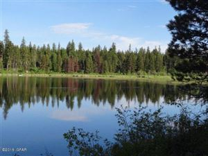 Photo of 8523 N Placid Lake RD, SEELEY LAKE, MT 59868 (MLS # 16-1591)