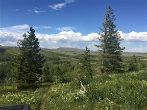 Photo of 1217 US Highway 49 #(165 acres apprx), BABB, MT 59411 (MLS # 18-714)