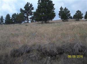 Photo of Box Canyon #MK-14, CASCADE, MT 59421 (MLS # 18-1806)