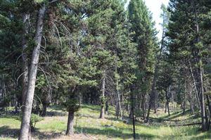 Photo of NHN Alpine Trails, SEELEY LAKE, MT 59868 (MLS # 18-1849)
