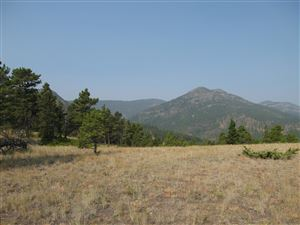 Photo of 127 WOLF CREEK CANYON TRACTS, WOLF CREEK, MT 59648 (MLS # 18-1871)