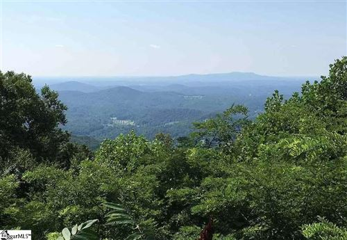 Photo of 1511 Panther Park Trail, Travelers Rest, SC 29690 (MLS # 1410543)