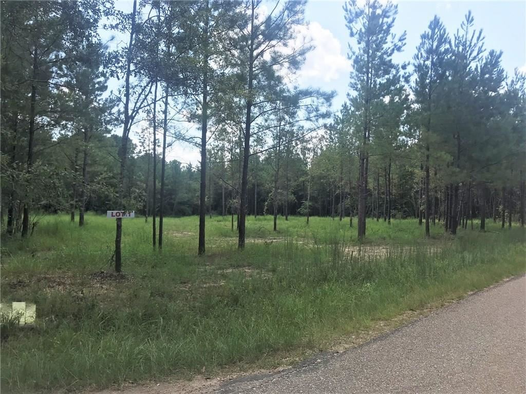Lot 1 C.E. STAFFORD Road, Franklinton, LA 70438 - #: 2200126