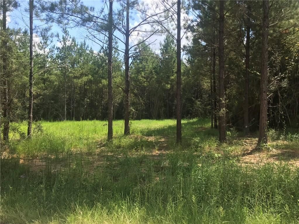 Lot 10 C.E. STAFFORD Road, Franklinton, LA 70438 - #: 2200149