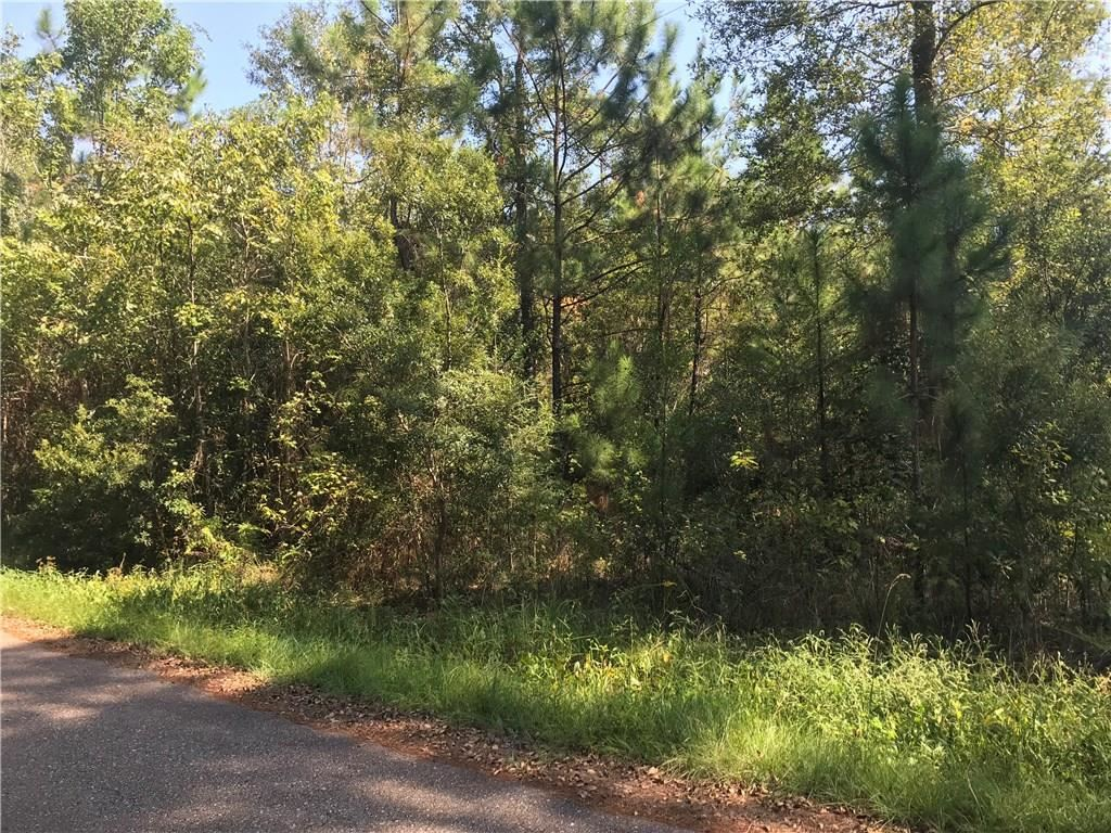 MURRAY ROAD Loop, Pearl River, LA 70452 - #: 2225242