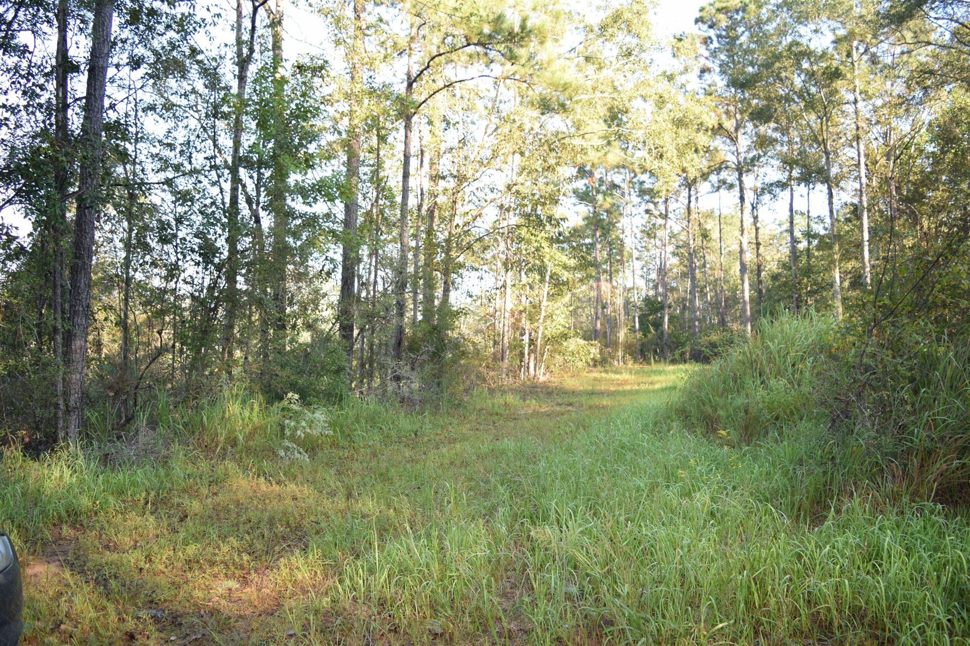 Photo of 20.9 Acres Lydia Gibson Dr., Lucedale, MS 39452 (MLS # 127177)